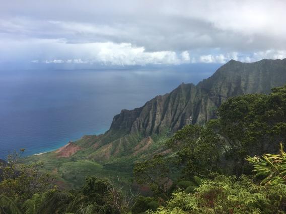 perspective kauai